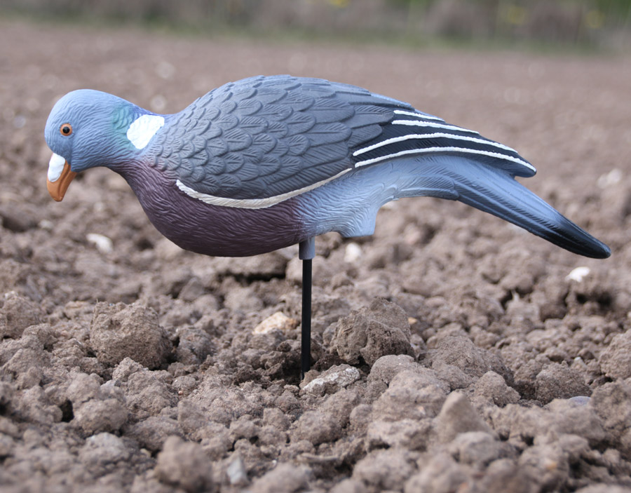 pigeon shooting decoys